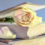 Buku: Kulit Aje Cantik, Tapi Isinya...