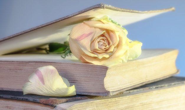 Buku: Kulit Aje Cantik, Tapi Isinya…